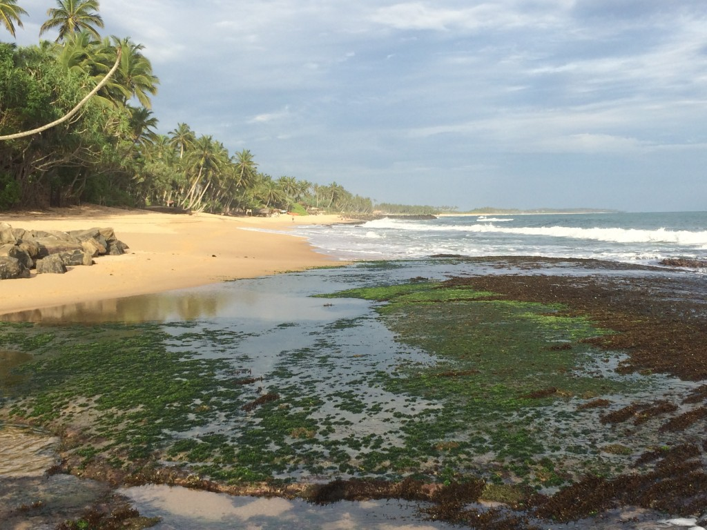 ....på den anden side Det Indiske Ocean.