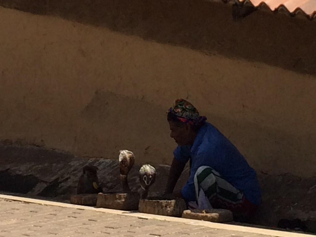 2 kobraer, 1 kvælerslange (pyton) og abe i halsbånd.